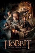 Le-Hobbit-la-Desolation-de-Smaug